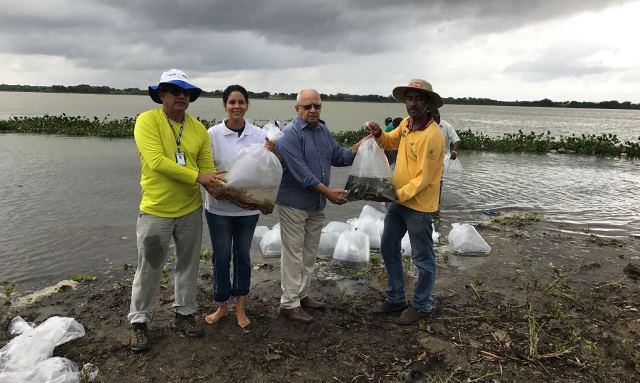 codevasf-promove-peixamento-em-petrolina-pe--durante-reunio-com-pescadores-da-regio-sobre-a-piracema_40298232351_o