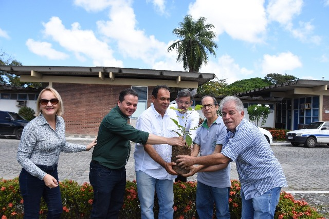 Resultado de imagem para Sede do IPA recebe o plantio de três Ipês